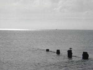 Isle_of_wight_05